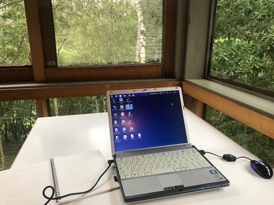 白樺とパソコン.jpg