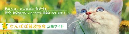 たんぽぽheader.jpg