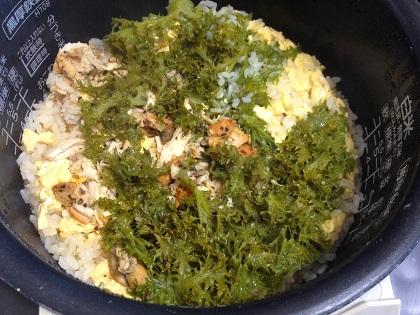 タンドリーチキン炊き込みご飯②.JPG