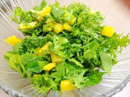 ワサビ菜.JPG