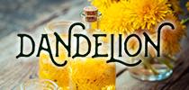 世界初のタンポポエキス入り基礎化粧品「ダンデリオン」